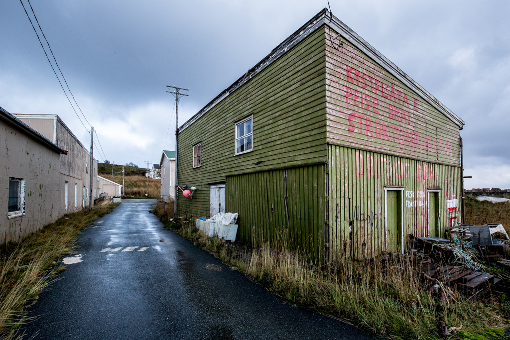 ... the green shed ...
